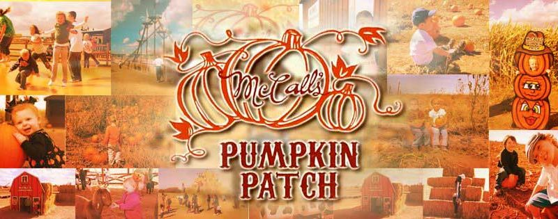 McCall's Pumpkin Patch in Moriarty, New Mexico