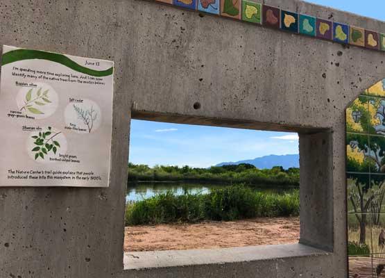 Rio Grande Nature Center in Albuquerque New Mexico