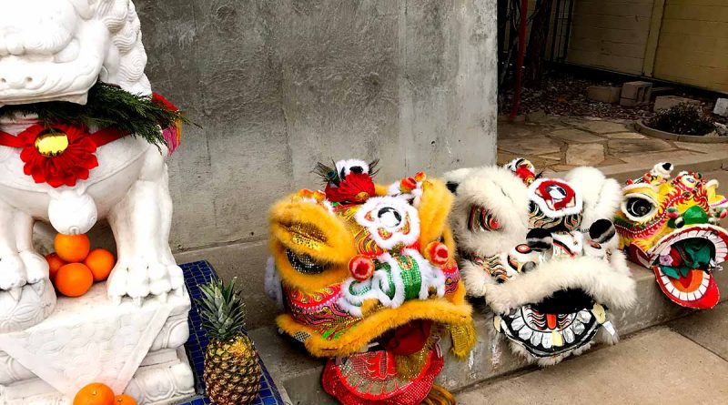 Chinese New Year Lion Costumes